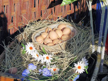 Eggs on hay Royalty Free Stock Photos