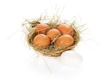 Eggs, hay in a bast basket. Isolated on white Royalty Free Stock Photography