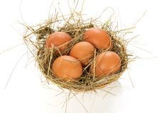 Eggs, hay in bast basket. Eggs, hay in a bast basket, isolated on white Stock Images