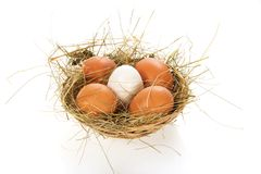 Eggs, hay in a bast basket. Isolated on white Stock Images
