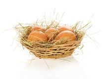 Eggs, hay in bast basket. Eggs, hay in a bast basket, isolated on white Royalty Free Stock Photo