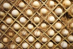 Eggs hay boxes royalty free stock image