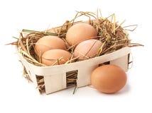 Eggs in hay Stock Photos
