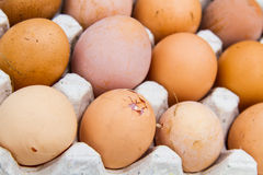 Eggs are health benefits And high protein Royalty Free Stock Photography