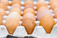 Eggs are health benefits And high protein Stock Images
