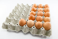 Eggs of a hen in harmless Stock Photo