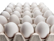 Eggs of a hen in packing on a white background. Stock Images