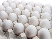 Eggs of a hen in packing on a white background. Stock Photo