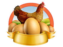Eggs and hen Royalty Free Stock Photography