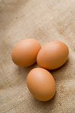 Eggs on hessian Royalty Free Stock Photo