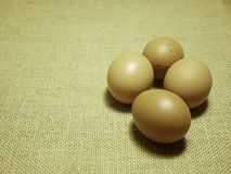 Eggs on Hessian sackcloth woven texture background royalty free stock photos
