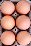 Eggs high view Royalty Free Stock Images