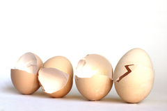 Eggs Hintergründe Stockbild