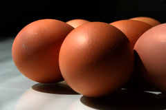 Eggs II. Eggs in front of black royalty free stock photos