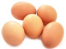 Eggs il bio- prodotto naturale Immagine Stock Libera da Diritti