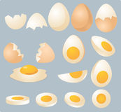 Eggs illustration. Eggs in various forms and slices, isometric 3d vector illustration Stock Images