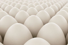 Eggs. Royalty Free Stock Photo