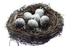 Free Eggs In Nest Stock Image - 8676801