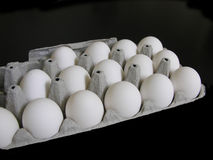 Eggs In The Carton Stock Images