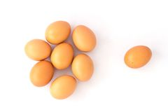 Eggs isolated Stock Photos