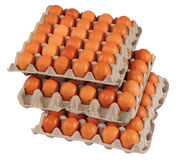 Eggs. Isolated Stock Photography