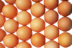 Eggs. Isolated on white background Stock Images