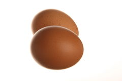 Eggs isolated on white background. Brown eggs isolated on white background Stock Images