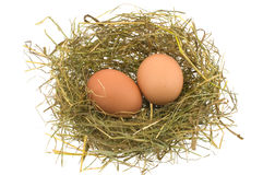Eggs in a jack Royalty Free Stock Images