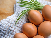 Morring eggs Royalty Free Stock Image