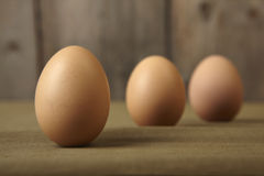 Eggs on the kitchen counter. Stock Images