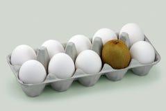Eggs and kiwi Royalty Free Stock Image