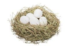 Eggs l'immagine con il percorso di ritaglio Fotografia Stock