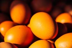 Eggs l'industrie de production photographie stock