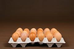 Eggs la bandeja Fotografía de archivo