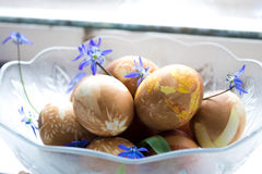 Eggs la composizione Immagini Stock Libere da Diritti