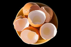 Eggs la ferme de poulet sur le fond Image stock