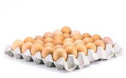 Eggs la poule Images stock