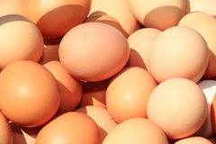 Eggs. A lot of eggs piled on each other Royalty Free Stock Photo