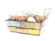 Eggs lying on hay in flowerpot Stock Images