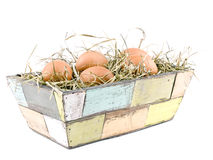 Eggs lying on hay in flowerpot Royalty Free Stock Photography