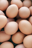 Eggs. Many fresh brown eggs for sale at a market Royalty Free Stock Images