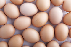 Eggs. Many fresh brown eggs for sale at a market Royalty Free Stock Image