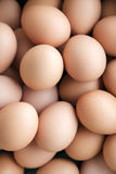 Eggs. Many fresh brown eggs for sale at a market Stock Image