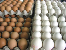 Eggs at the market Stock Image