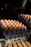 Eggs at market Stock Photography
