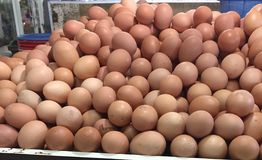 Eggs at market. Eggs at traditional market Royalty Free Stock Photos