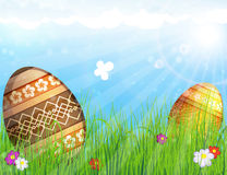 Eggs on meadow with flowers Royalty Free Stock Photo