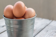Eggs in metallic bucket Stock Photos