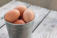Eggs in metallic bucket Stock Photo