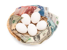 Eggs with money in basket. Isolated on white background. Financial concept Stock Photography